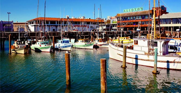 Fleet's In - Pier 39 - San Francisco