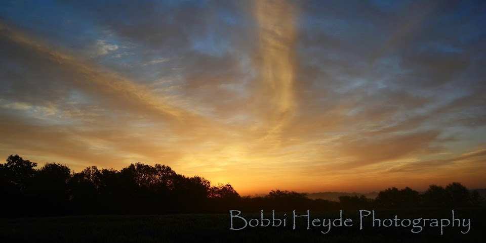 Bobbi Heyde Photography
