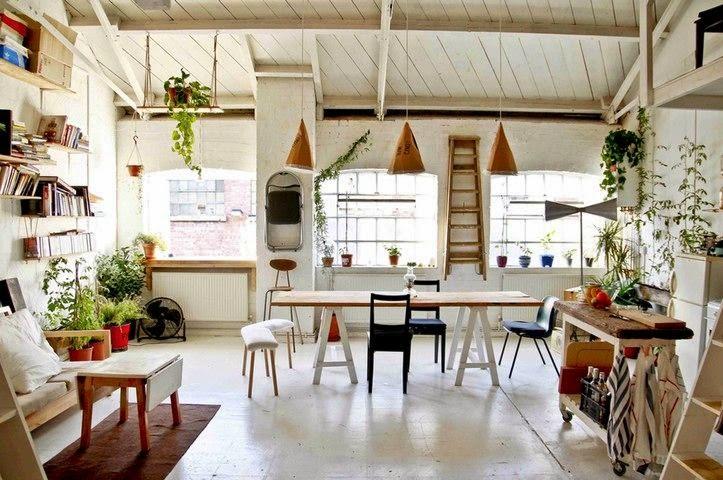 Espacio interior rústico decorado con plantas