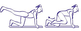 persona haciendo ejercicios, haciendo ejercicios, mujer haciendo ejercicios, ejercicios para las piernas,ejercicios para los gluteos, levantar las piernas arriba y abajo, mujer haciendo ejercicios, mujer que hace ejercicios