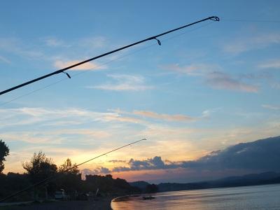 Những điều cần biết khi bắt đầu câu cá