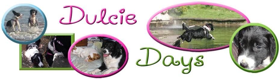 Dulcie Days