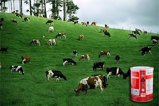 công dụng sữa non, lợi ích sữa non, Sữa non, sữa non cho bé, sữa non, sua de cho be,  mua sua de, sữa cho trẻ, sữa trẻ em, sữa cho trẻ em, sữa non deep blue health