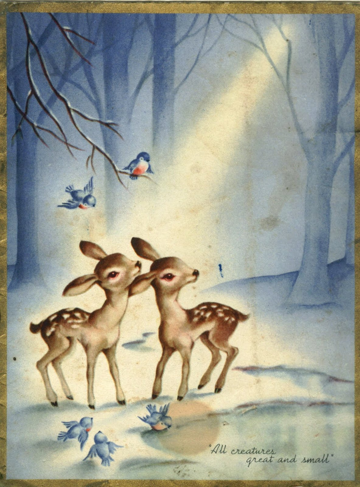And Small Fawns And Deers