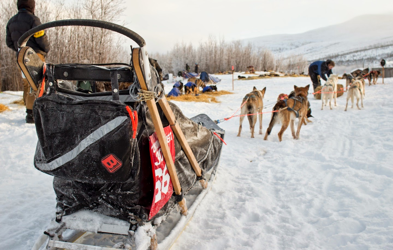 boundary sled dog kennel