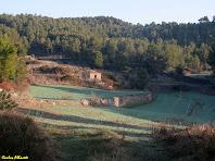 Barraca de vinya nº 2. Autor: Carlos Albacete
