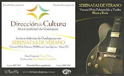 SERENATAS DE VERANO 2011