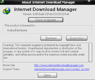 Download Internet Download Manager 6.09 build 3 Portable