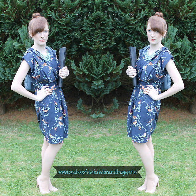 LMLMF Closet Clothing Bird Print Dress Blog Review