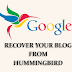 How To Recover Your Blog From Hummingbird Penalty