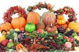 Langsing Alami tanpa Obat dengan Cara Diet Sehat