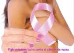 Fisiocatessen lucha contra el cáncer de mama