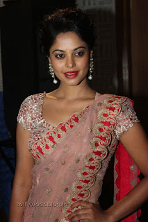 Actress Bindu Madhavi Saree Picture Stills 009.jpg