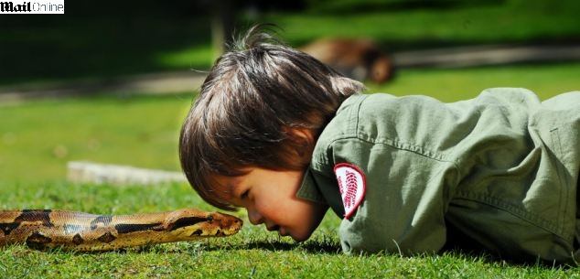 Charlie Parker, de apenas 3 anos de idade, encara uma cobra deitado no chão da reserva animal de sua família