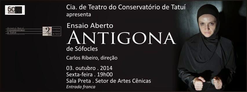 Rogério Vianna - Ator e Gestor Cultural