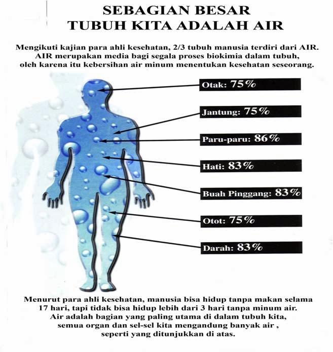 air,tubuh badan, pentingnya minum air, minum