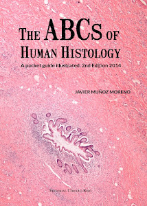 THE ABCs OF HUMAN HISTOLOGY
