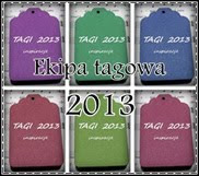 TAGI 2013