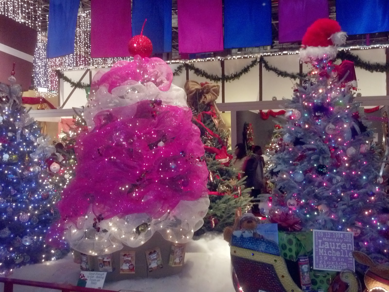 southern christmas show 2013 charlotte nc
