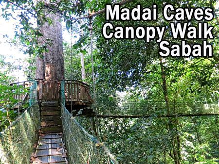 Madai Caves Canopy Walk Kunak, Sabah