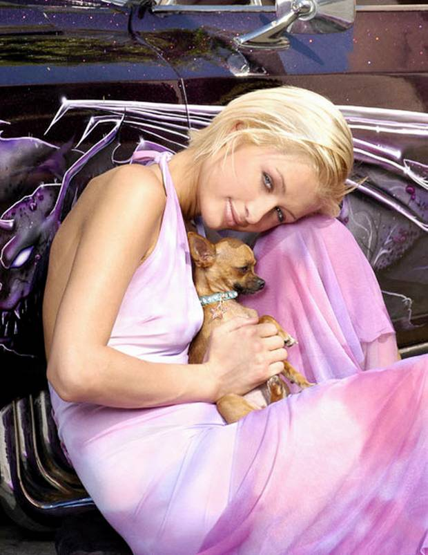 Hollywood Celebrities Pets