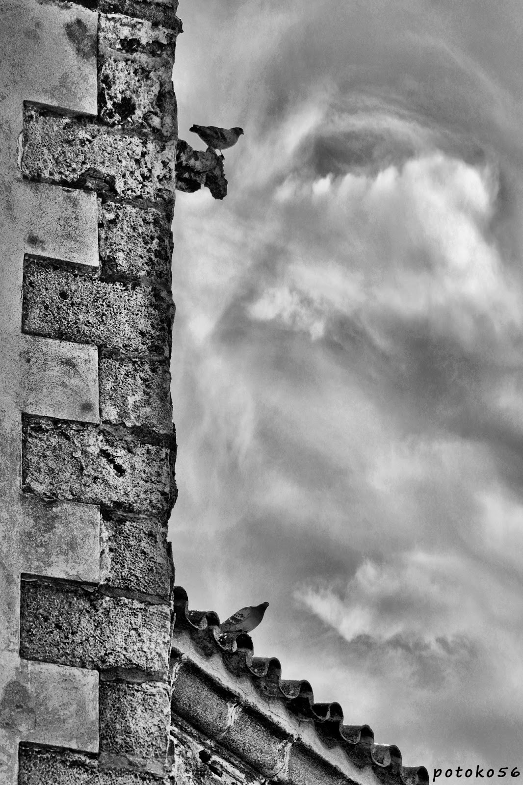 Palomas en la esquina de la pared de la Parroquia de la O Rota