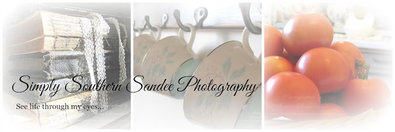 Simply Southern Sandee Photography