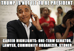 Community Organizer