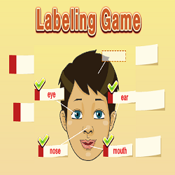 Body Parts Labeling (Fun Educational Game)