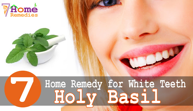 Holy Basil for white teeth