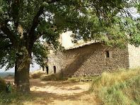 L'església de Sant Julià d'Úixols amb el majestuós roure del seu davant