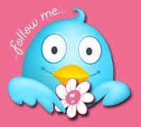 <<-----Folge mir----->>