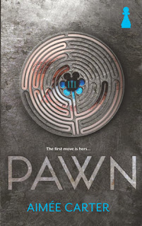 Pawn Aimee Carter book cover