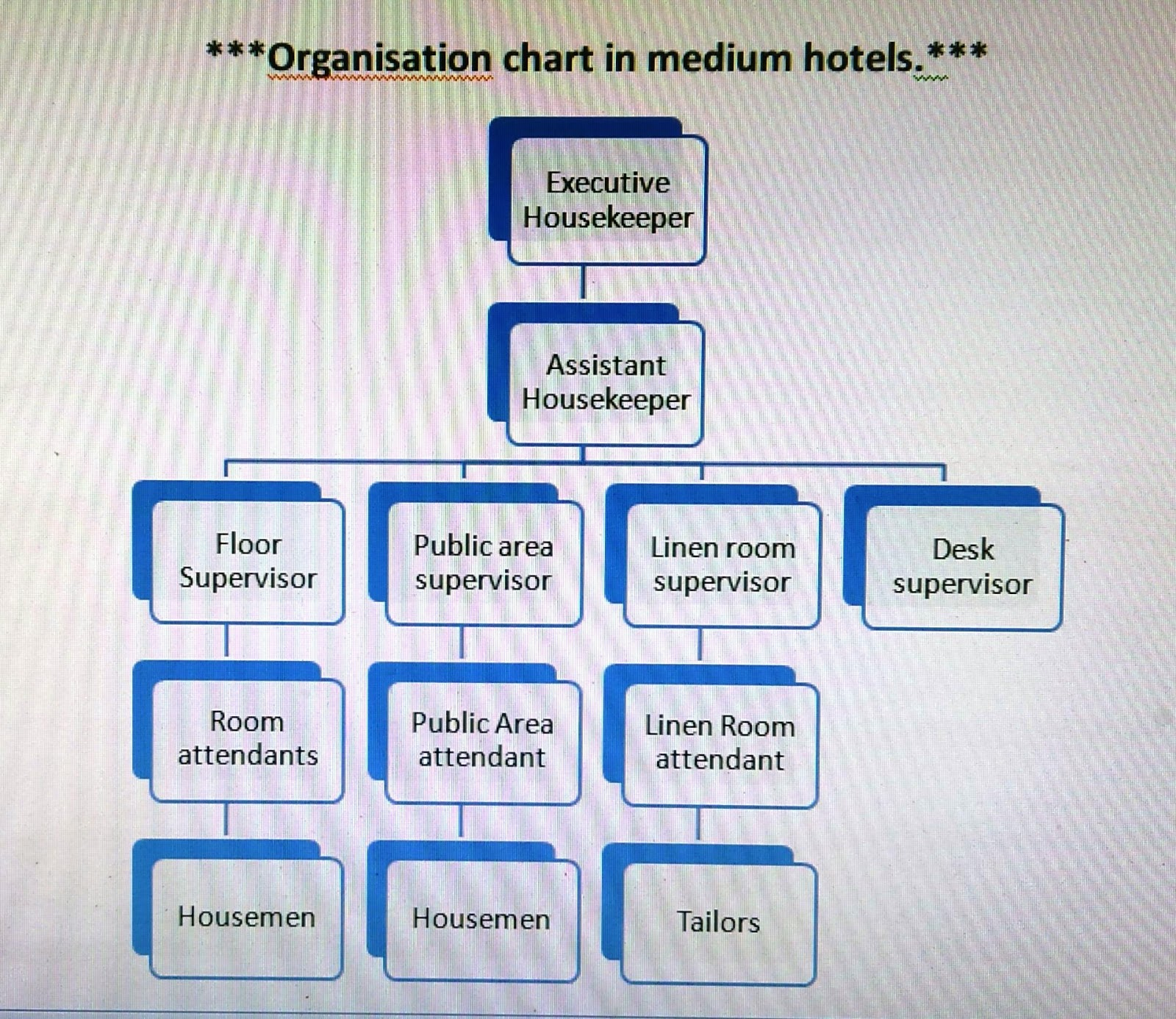 Organization Chart Of Housekeeping Department