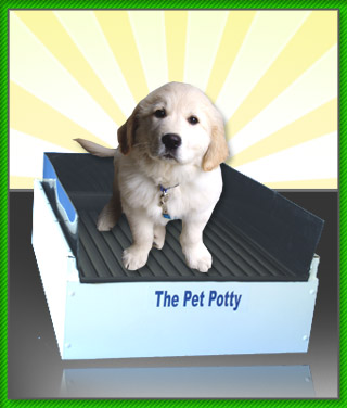 how to potty a puppy
