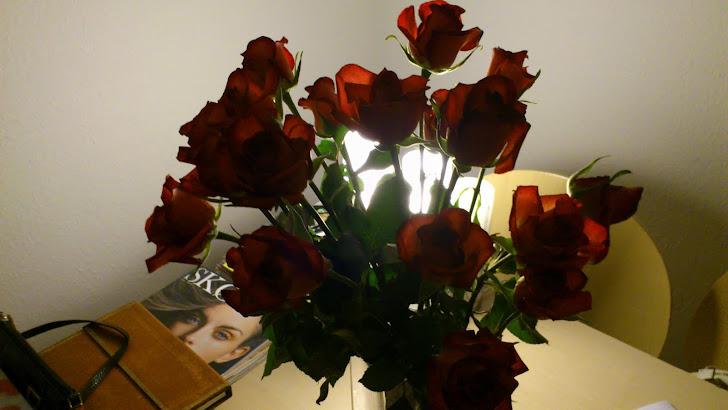 Flowers of week 3
