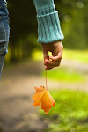 A simplicidade é a base da vida.