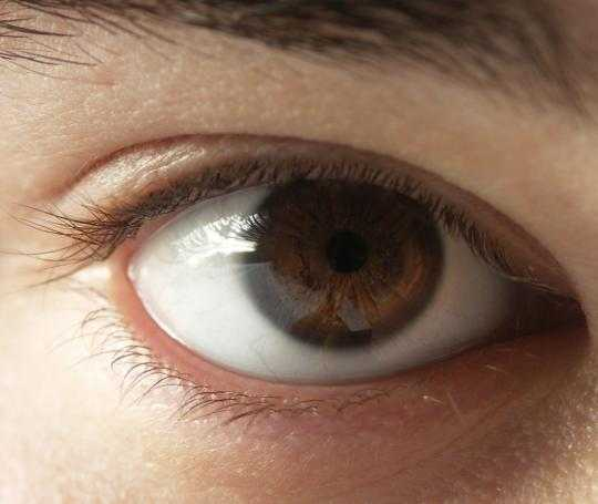 Warna mata cokelat