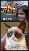 Funny Grumpy Cat. Posted by Grumpy Cat at 3:32 PM 1 comment:
