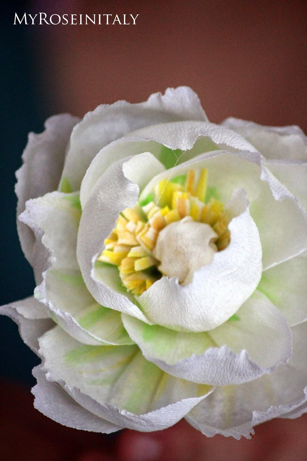 My roseinitaly peonie di carta crespa for Peonie periodo