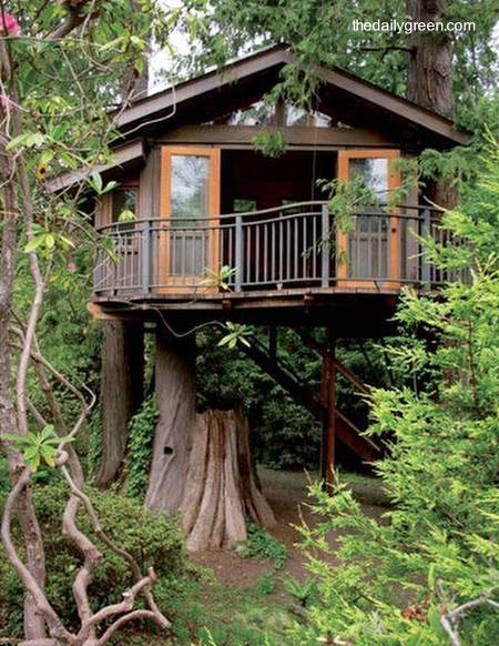 dream house on pinterest treehouse tree houses and window