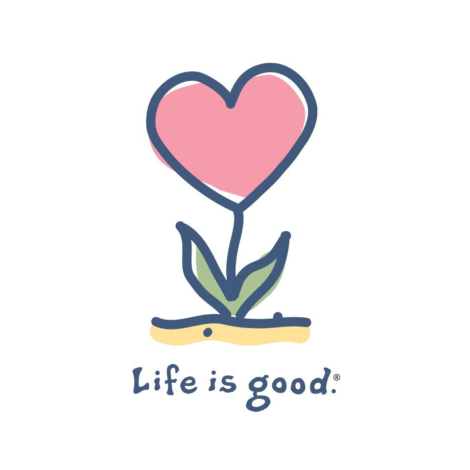 life is good Life definition, the condition that distinguishes organisms from inorganic objects and dead organisms,  as of substances when fresh or in good condition.