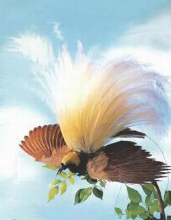 DERITA PAPUA  (Cipt: Loela Drakel)
