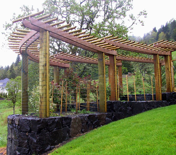 tradesmen services trellis fencing a popular choice for many - Trellis Design Ideas