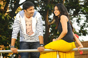 Loukyam Movie photos gallery-thumbnail-11