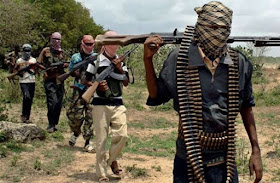 Boko Haram beheads residents after attack on Borno village