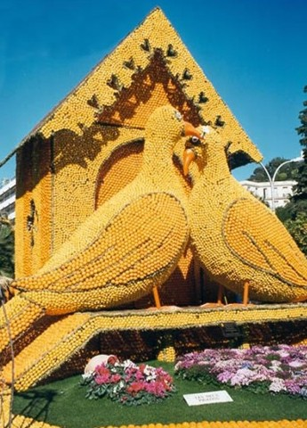 pigeons made of oranges