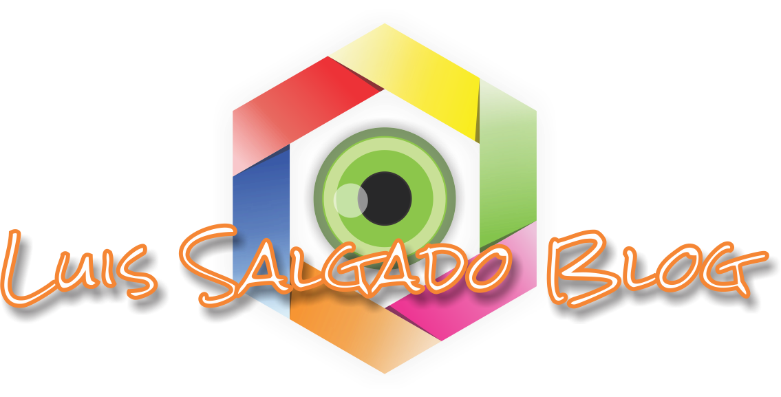 Luis Salgado Blog