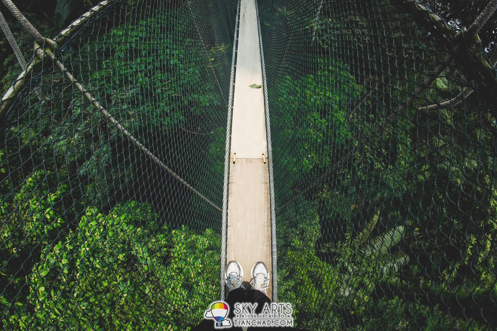 FRIM Kepong Canopy Walkway
