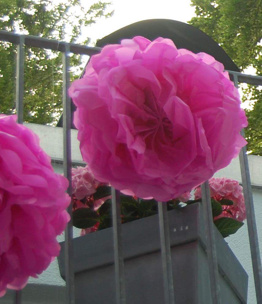 Partyerie celebrate pink - Pompoms kinderzimmer ...